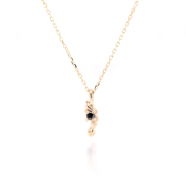 Carina necklace II | black diamond