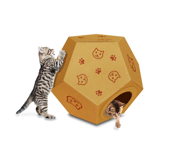 cats playing in Rocking Ball Cardboard Playhouse