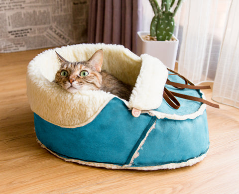 Shoe Cat Bed in blue suede with a cat in it