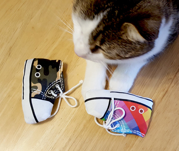Cat playing with sneaker cat toys