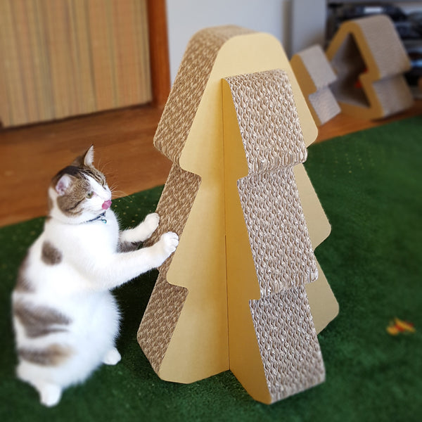 Cat playing the Cardboard Standing Scratcher Tree