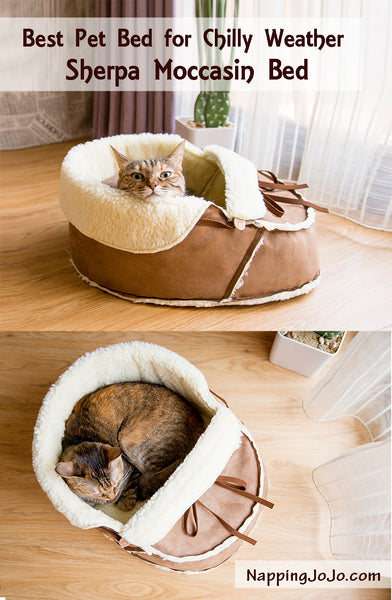 Best pet bed for chilly weather: sherpa moccasin bed