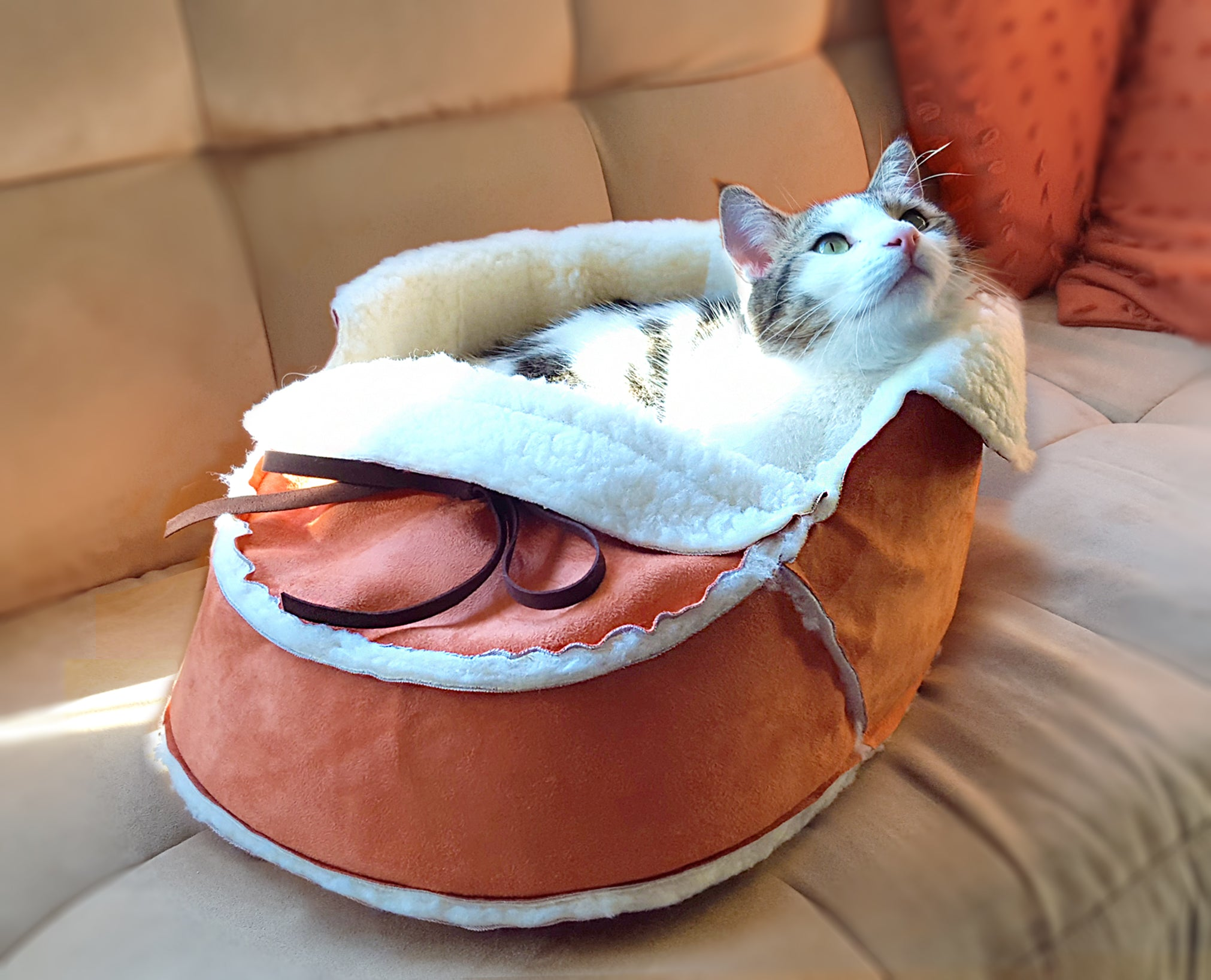 Sherpa Moccasin Cat Bed in Orange with a cat snuggling in it