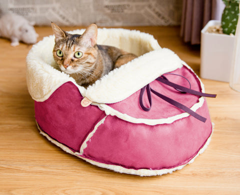 pink moccasin pet bed with a cat in it