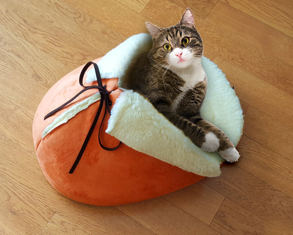A cat sleeping in the slipper bed in orange