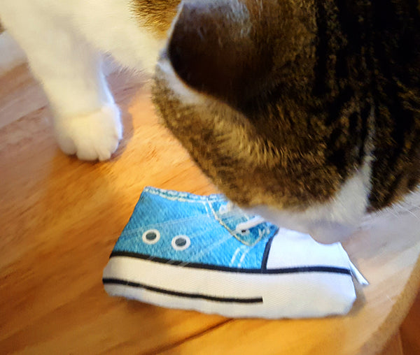 Cat playing with a sneaker cat toy