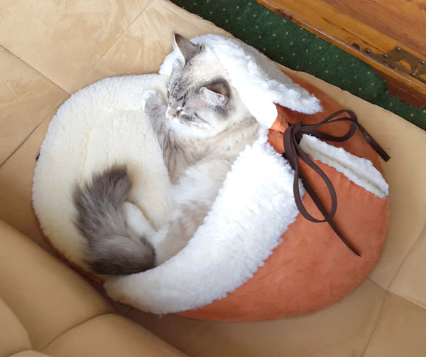 Slipper Pet Bed top view with a cat in it