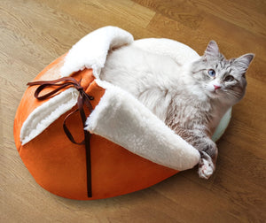 cat sleeping in a tangerine giant slipper pet bed