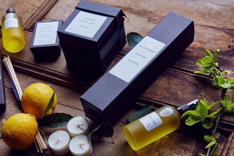 Lemon Verbena Home Fragrance Collection with Luxury Scented Candle, Reed Diffuser, Room Spray