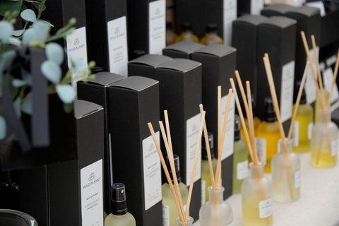 Home Fragrance Diffuser row of reed diffuser bottles with reed sticks