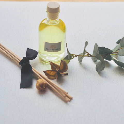 Home Fragrance Diffuser bottle with bundle of reed sticks with eucalyptus leaf and dried fruit