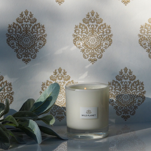 Spice Night Candle next to foliage by Wild Planet Products