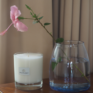 Aromatherapy Relax Candle in Midsummer next to vase with flower by Wild Planet Products
