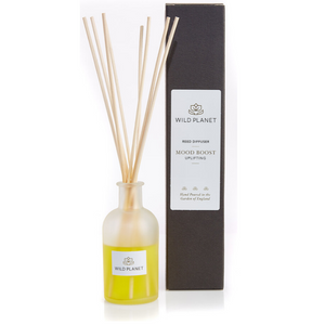 Natural Reed Diffuser glass bottle in Mood Boost next to Black Box by Wild Planet Products