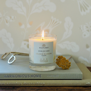 Lit Orange Blossom scented candle on book next to wick trimmer and orange flower by Wild Planet