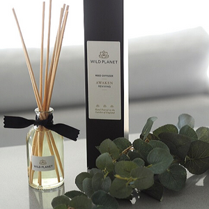 Awaken Natural Reed Diffuser in glass bottle and sticks next to black box and eucalyptus stem
