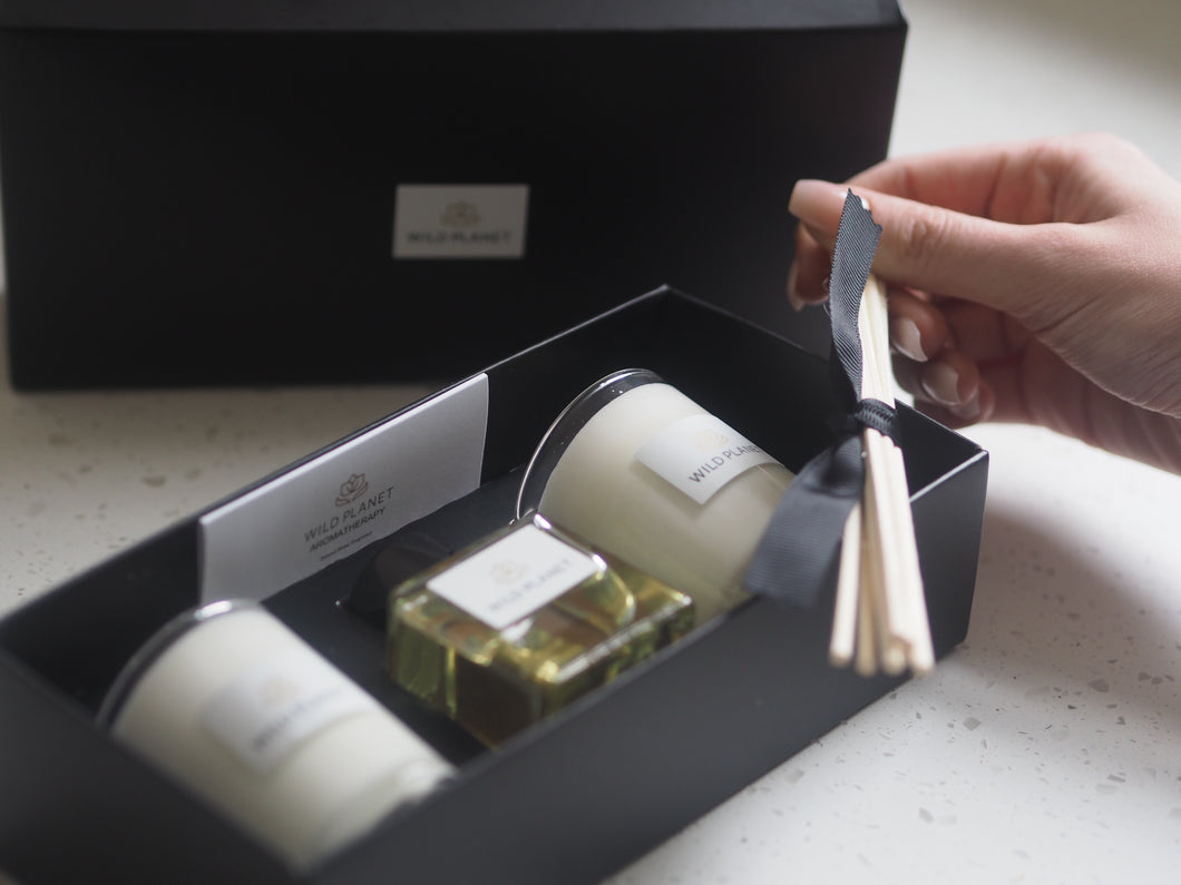 Open box of Reed Diffuser and Candle Gift Set with hand holding reed sticks by Wild Planet Products