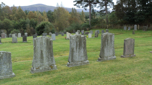 Insh Cemetery - Inverness PDF