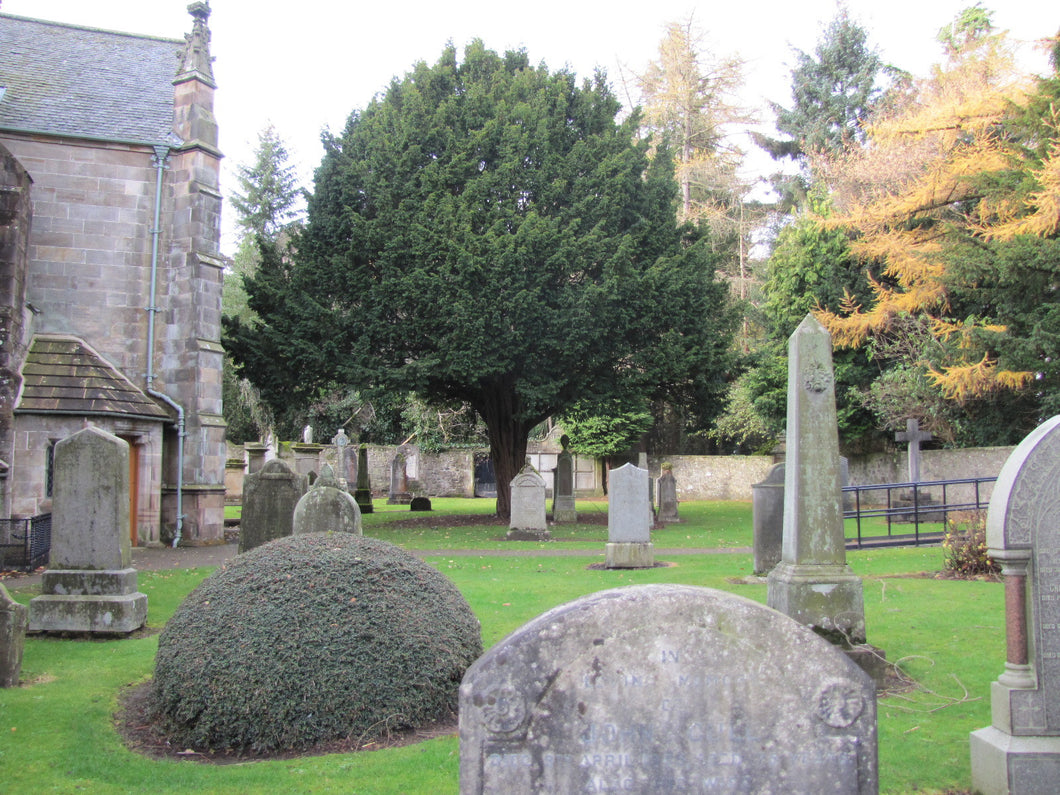 Kirk of Calder Churchyard - West Lothian PDF