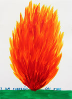 David Shrigley - I Am Currently On Fire, 2018