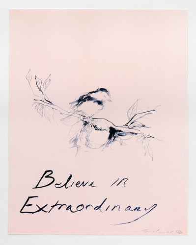 Believe in Extraordinary, 2015