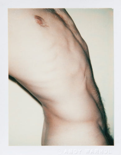 Andy WARHOL - Sex Parts & Torsos, 1970-1986