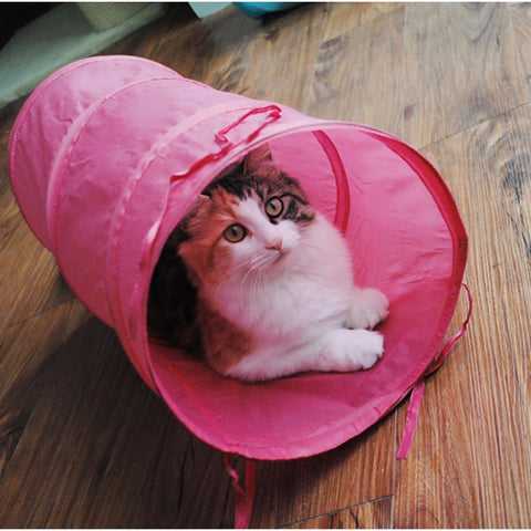 Small Pet Play Tunnel