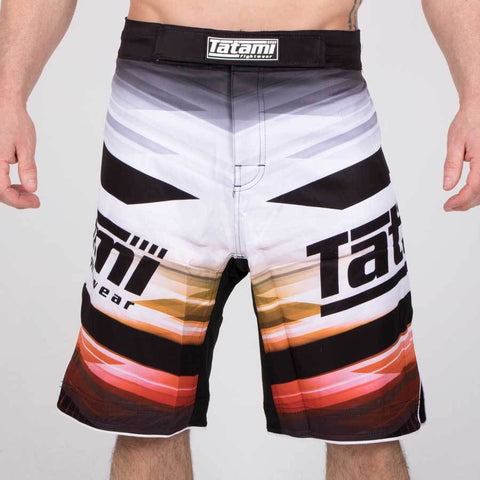 Collision Standard Fit Shorts