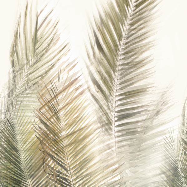 Olive Green On Cream, A Textured Vinyl Mural With Large Palm Leaves On A Faux Grasscloth Ground. 10010 72