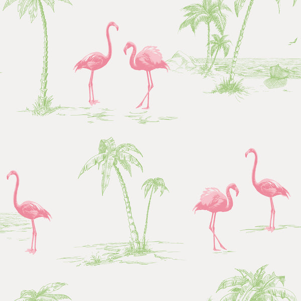 Sarasota Pink Flamingos Wallpaper