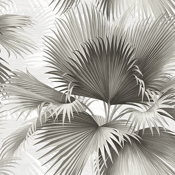 Summer Palm Charcoal Tropical Wallpaper, 2927-40100