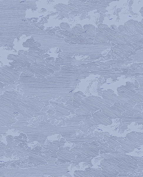 Palila Navy Cloud Wallpaper