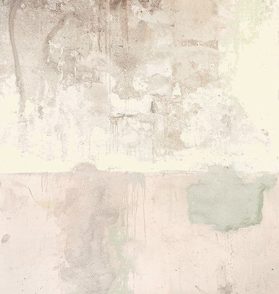 Pale Pink Weathered Wall Mural