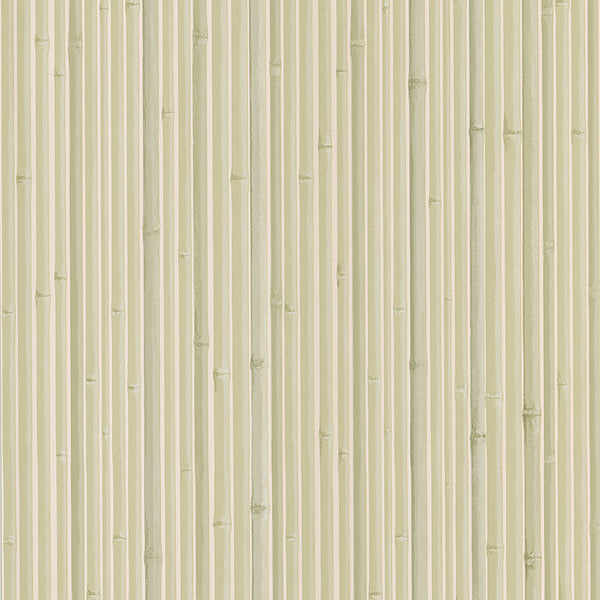 Kyoto Light Grey Bamboo Wallpaper