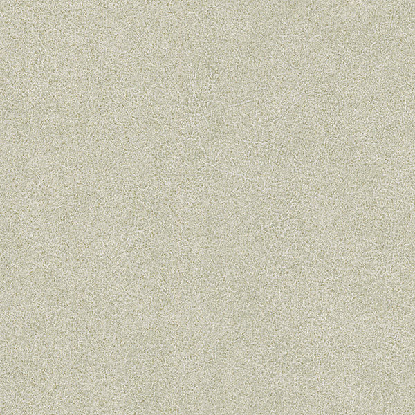Jaipur Light Green Elephant Skin Texture