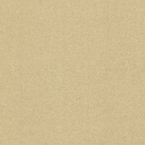 Notion Gold Texture Wallpaper
