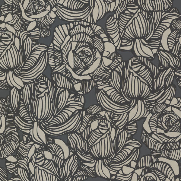 Calista Black Modern Rose Wallpaper