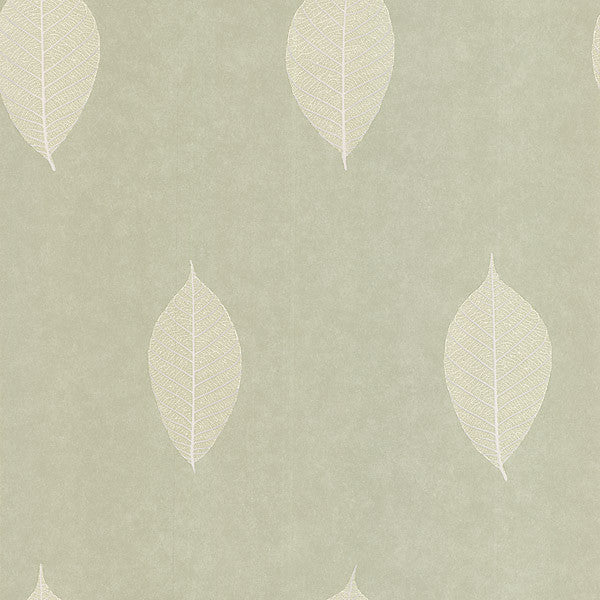Malabar Light Green Leaf Wallpaper