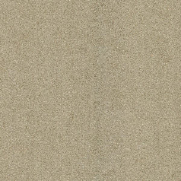 Madelaine Texture Beige Outline Rose Texture Wallpaper