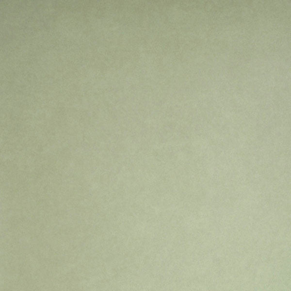 Deluxe Light Green Posh Texture Wallpaper