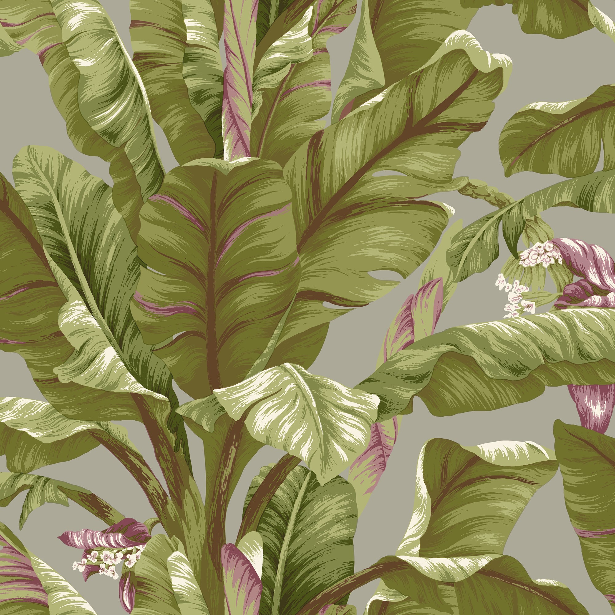 Tropics Banana Leaf Wallpaper