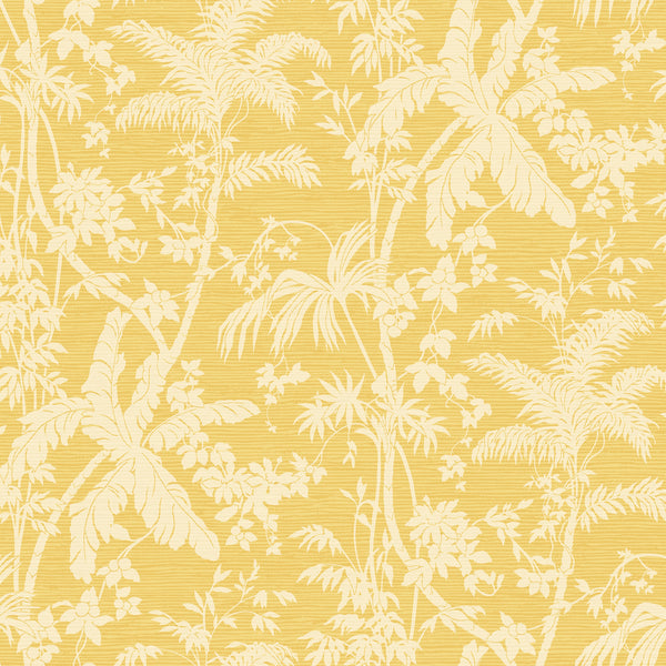 Tropics Palm Shadow Wallpaper