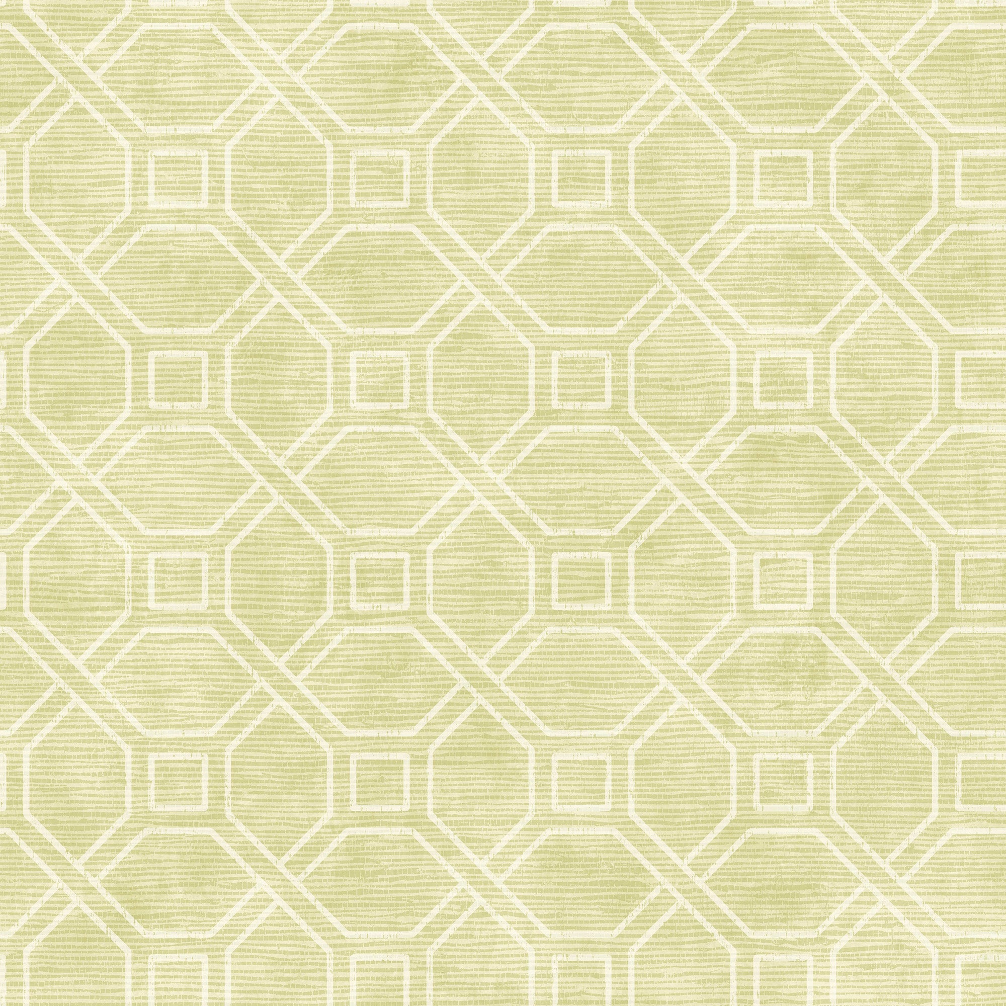 Coastal Trellis Wallpaper - Lime