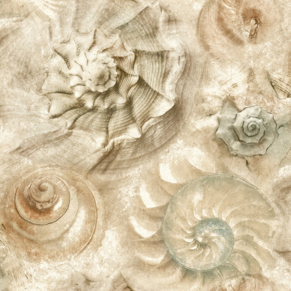 Opulent Shell Wallpaper - Sand