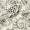 Opulent Shell Wallpaper - Gray