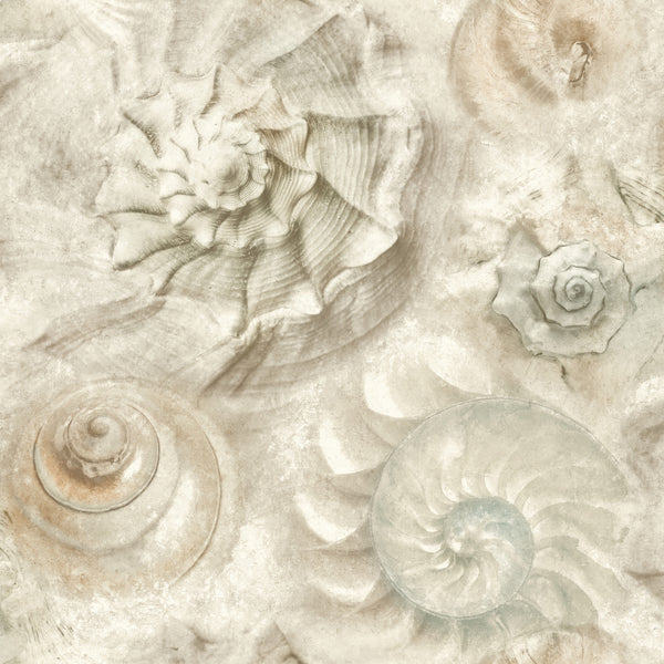 Opulent Shell Wallpaper - Stone