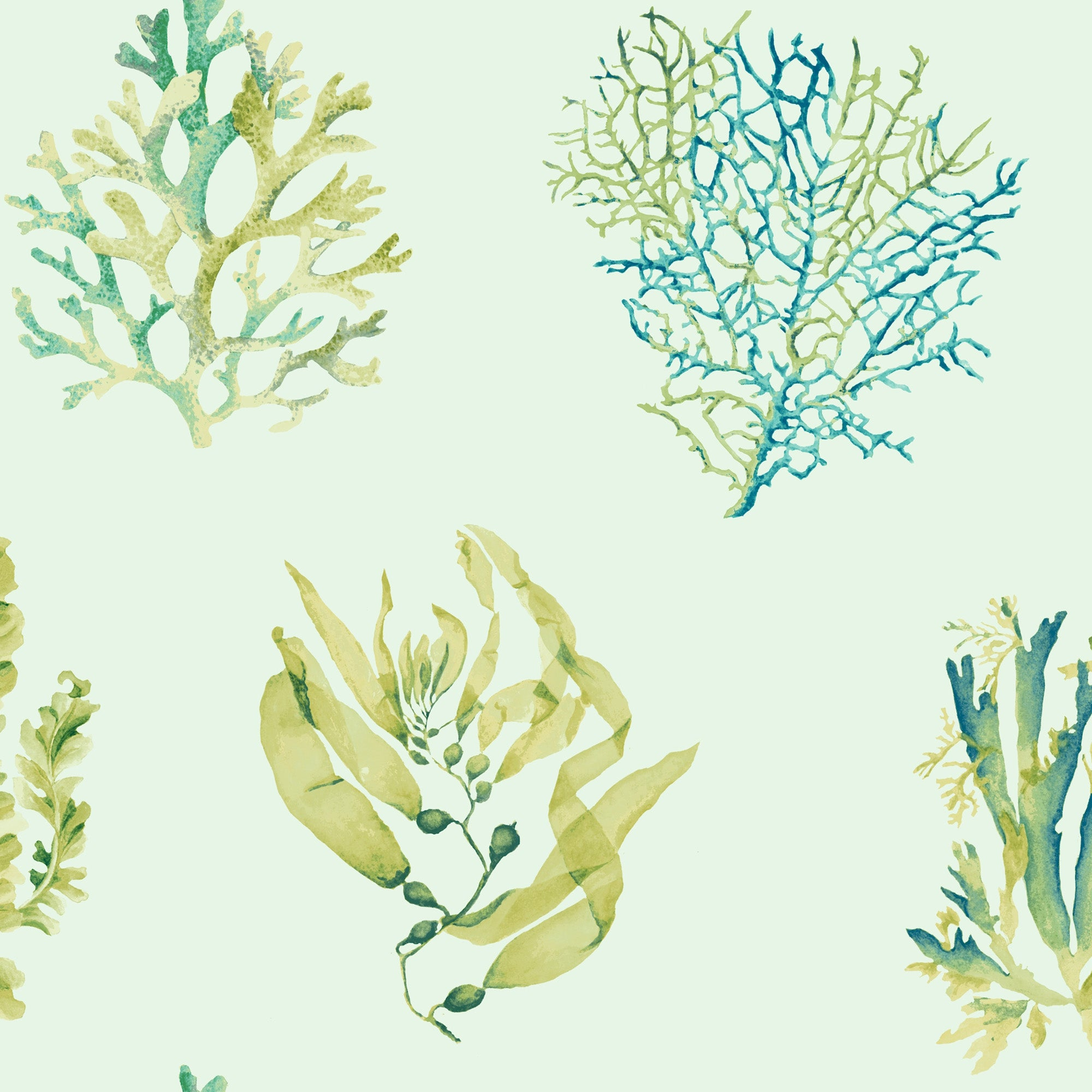 Seaweed Wallpaper - Aqua