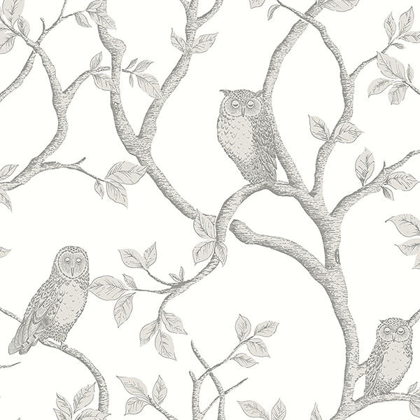 Enchanted Forest Grey Owl & Tree Wallpaper