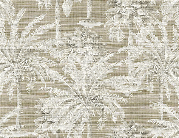 Dream Of Palm Trees Brown Texture Wallpaper