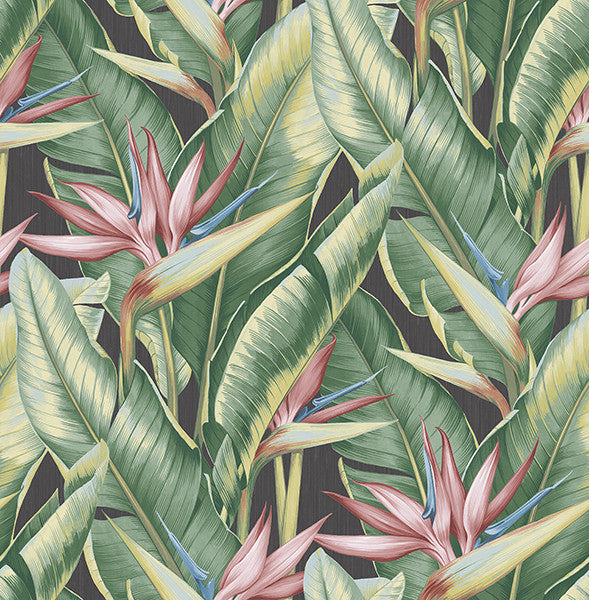 Arcadia Pink Banana Leaf Wallpaper